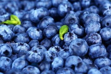 Tasty ripe blueberries, close up
