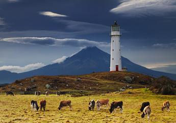 Wall Mural - Cape Egmont Lighthouse, New Zealand