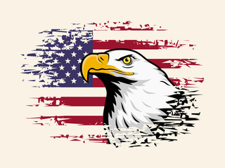 American eagle against USA flag background