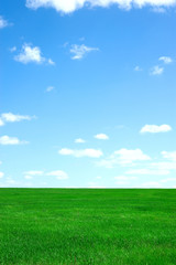 Garden Poster Green Landscape with green field and blue sky
