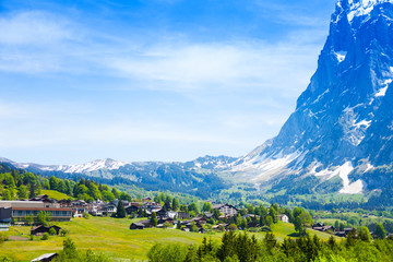 Wall Mural - Beautiful view of Grindelwald Alps in Switzerland