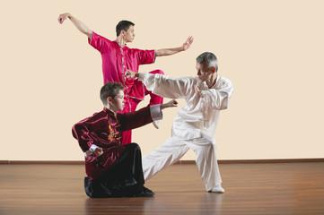 Lange Faust Style,Kung Fu Lehrer und Jungen
