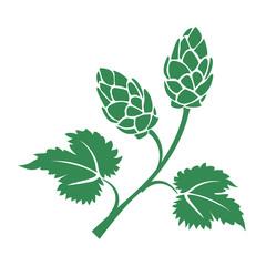 Green vector hops icon