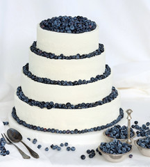 Wedding cake on white background with blueberries