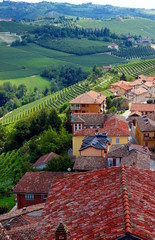 paesaggio nelle Langhe, Piemonte