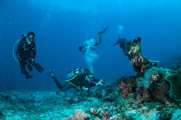 Divers in Gili Lombok Nusa Tenggara Barat Indonesia underwater