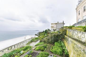 Alcatraz Garden, San Francisco, California