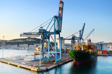 Ancona port Fototapete