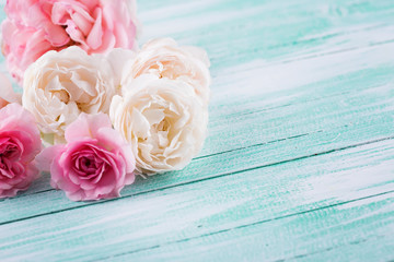 Fresh roses on wooden background.