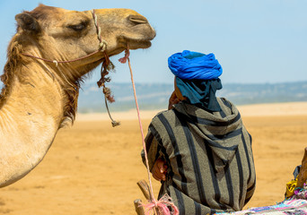 A camel waiting for its owner who is admiring the seascape