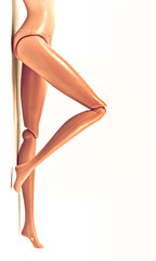 body shapes of mannequin on a white background