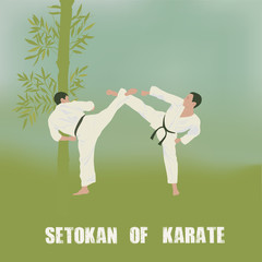 Illustration, two men are engaged in karate.