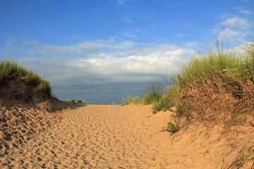 Sand Dunes Along Lake Michigan, USA