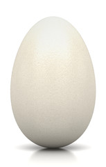 Uovo di rettile, alieno, gallina