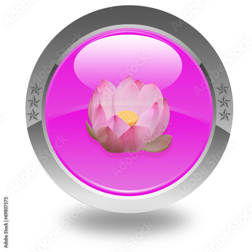 Fleur Rose De Lotus Sur Bouton Rose Stock Photo And Royalty Free