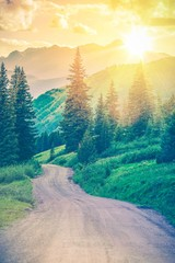 Wall Mural - Scenic Mountain Road