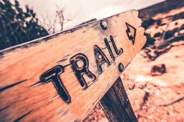 Wooden Trail Sign Wall mural