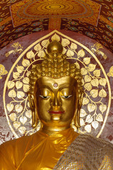 Close up buddha image.