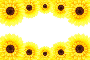 Sunflower at upper and lower border