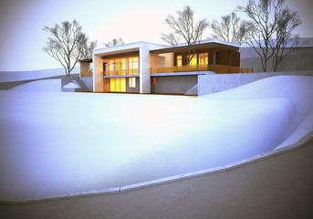 The dream house. Winter time.