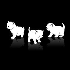 White Cats Silhouettes Icons on Black Background. Vector