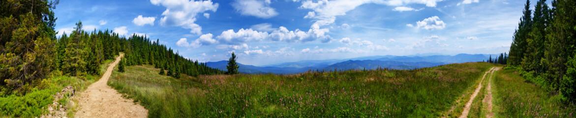 Rozległa panorama na Beskidy