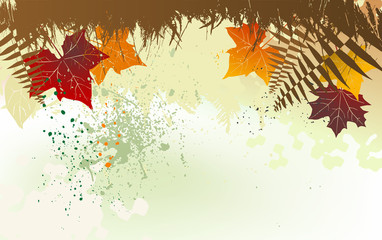 Autumn background with a space for a text