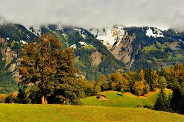 Obraz Szwajcaria , Alpy - fototapety do salonu