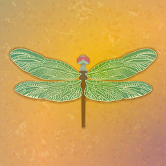 Graceful dragonfly. Abstract background.