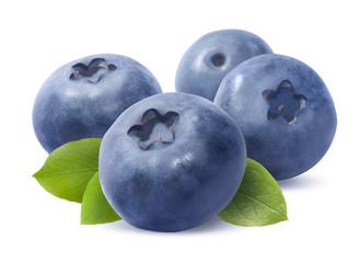 Blueberry group isolated on white background