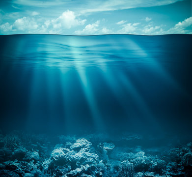 Underwater coral reef seabed and water surface with sky