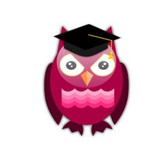 Gufo con cappello da diploma