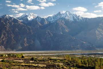 Nubra valley - Indian himalayas - Ladakh