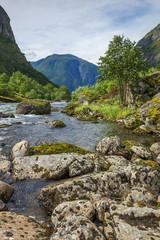 Norwegia , krajobraz wiejski
