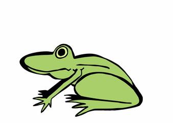 doodle frog