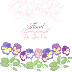 Floral background with color pansies