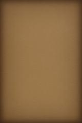 Pastel Paper Olive Green Coarse Vignette Grunge Texture