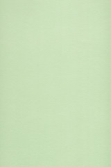 Pastel Paper Light Lime Green Coarse Grunge Texture