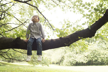 boy relaxing on tree
