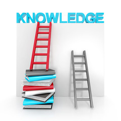 ladders and books up to knowledge. education concept