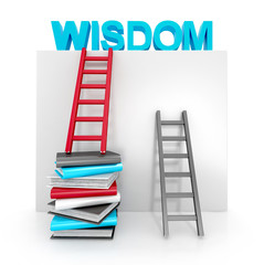 ladders and books up to wisdom