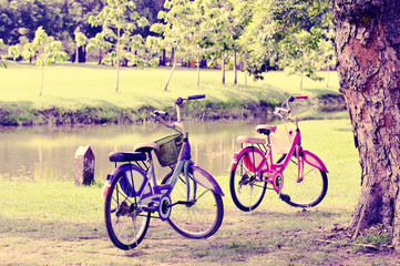 Two bicycles in the park's atmosphere