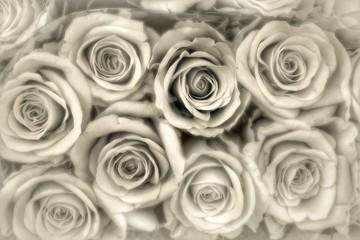 Beileidskarte, Rosenhintergrund...