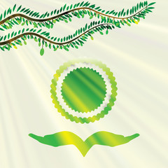 Vector olive tree green background