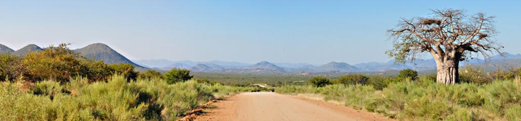 In de dag Baobab Kaokoveld panorama