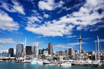 Wall Murals New Zealand Auckland, North Island, New Zealand skyline