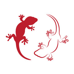 Vector image of an gecko on white background