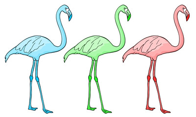 Flamingo color
