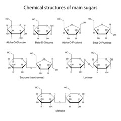 Chemical structures of main sugars: mono- and disaccharides