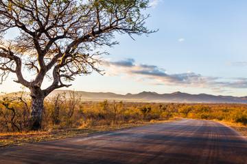 Papiers peints Afrique du Sud African Landscape